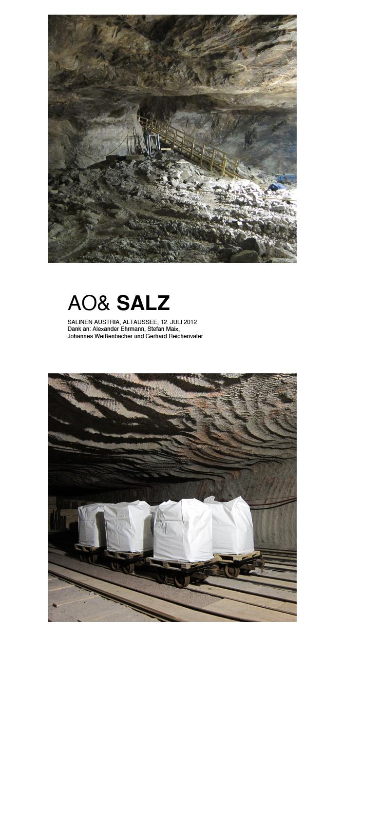 salzweb03.jpg